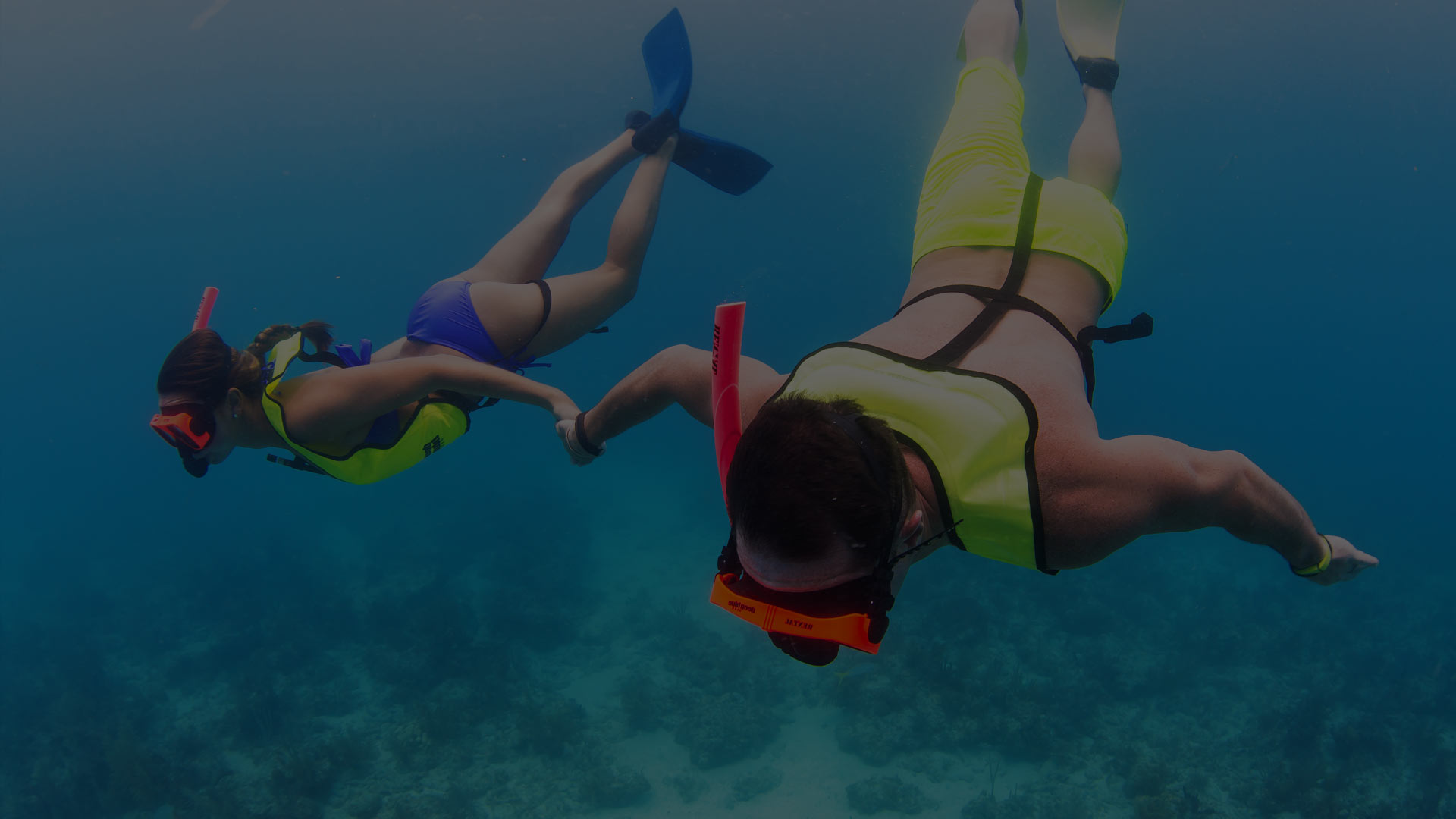 Underwater Shot of Couple Snorkeling a Reef