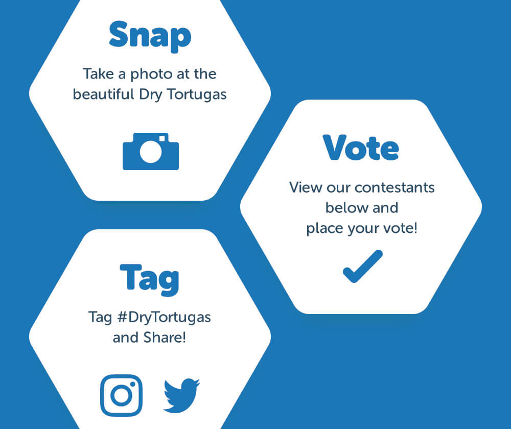 Snap Tag Vote