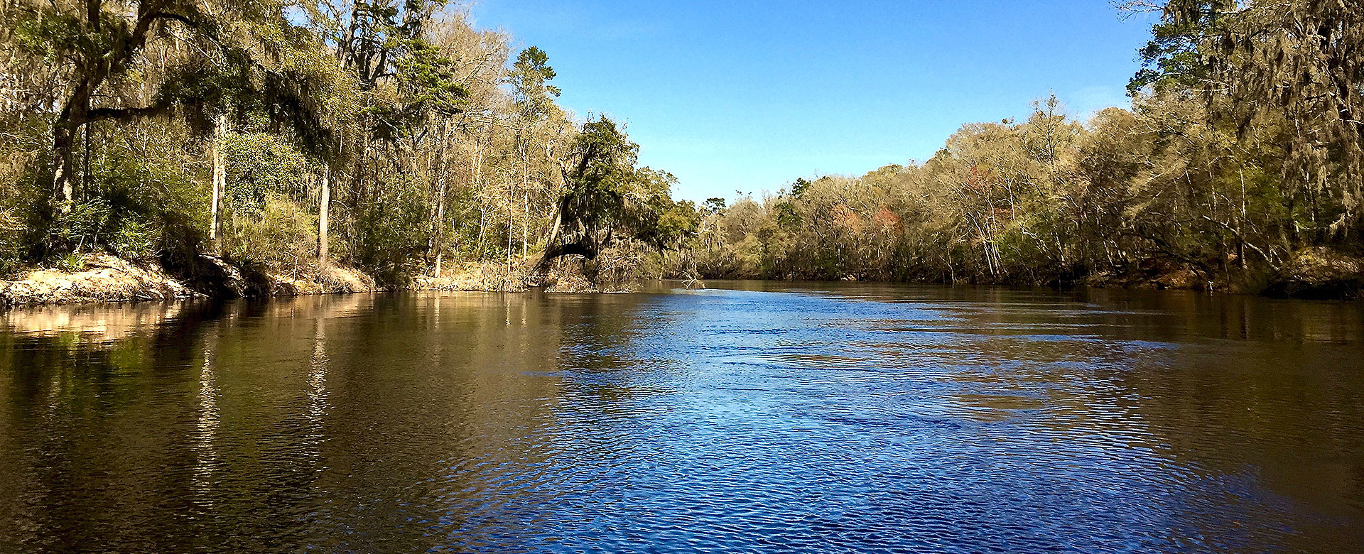 suwannee county river