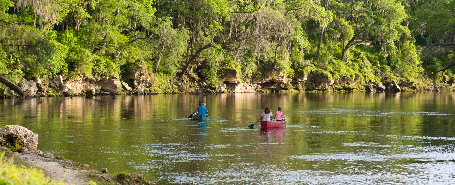 Two canoes with two people in each in the middle of the Suwannee River surrounded by trees