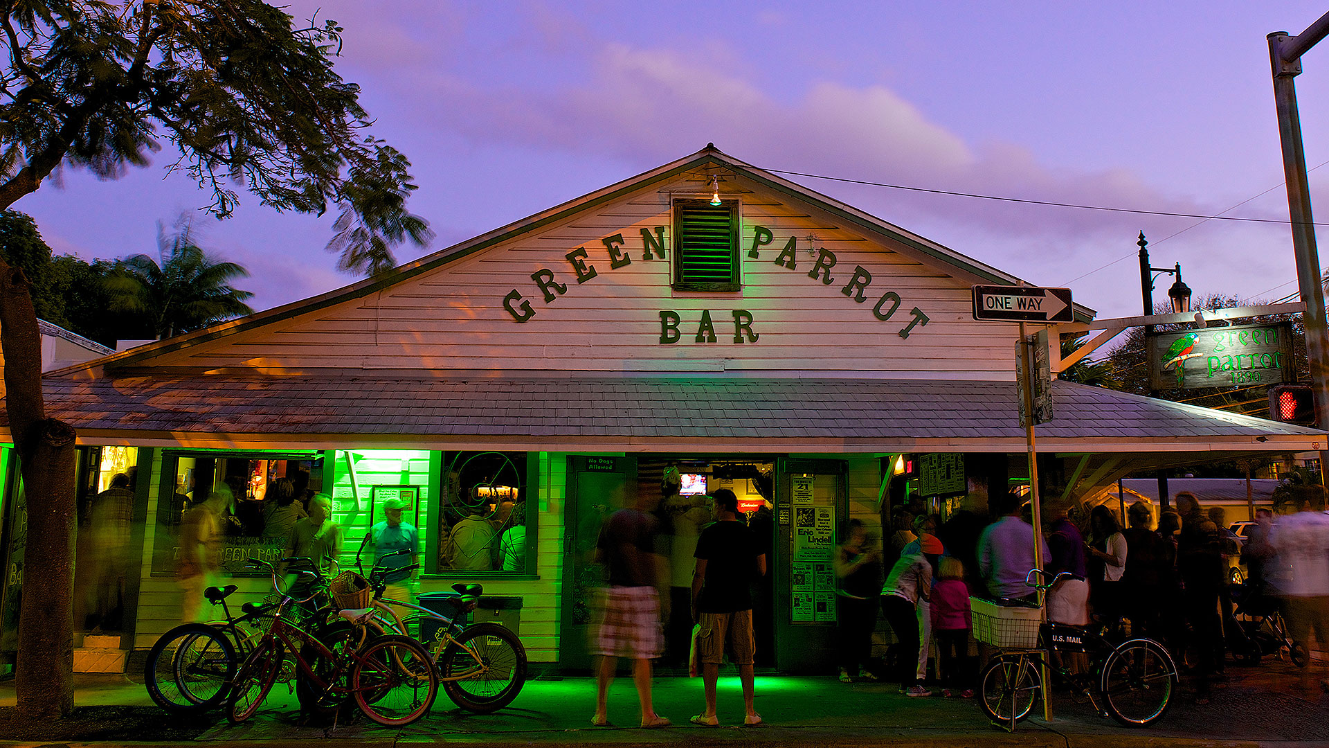 picture of green parrot bar exterior of building at night