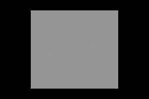logo that read 'The World Famous Conch Tour Train'