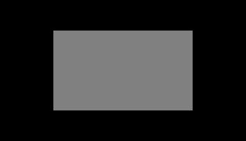 SunTrust logo with a sunburst above the word 'SunTrust'