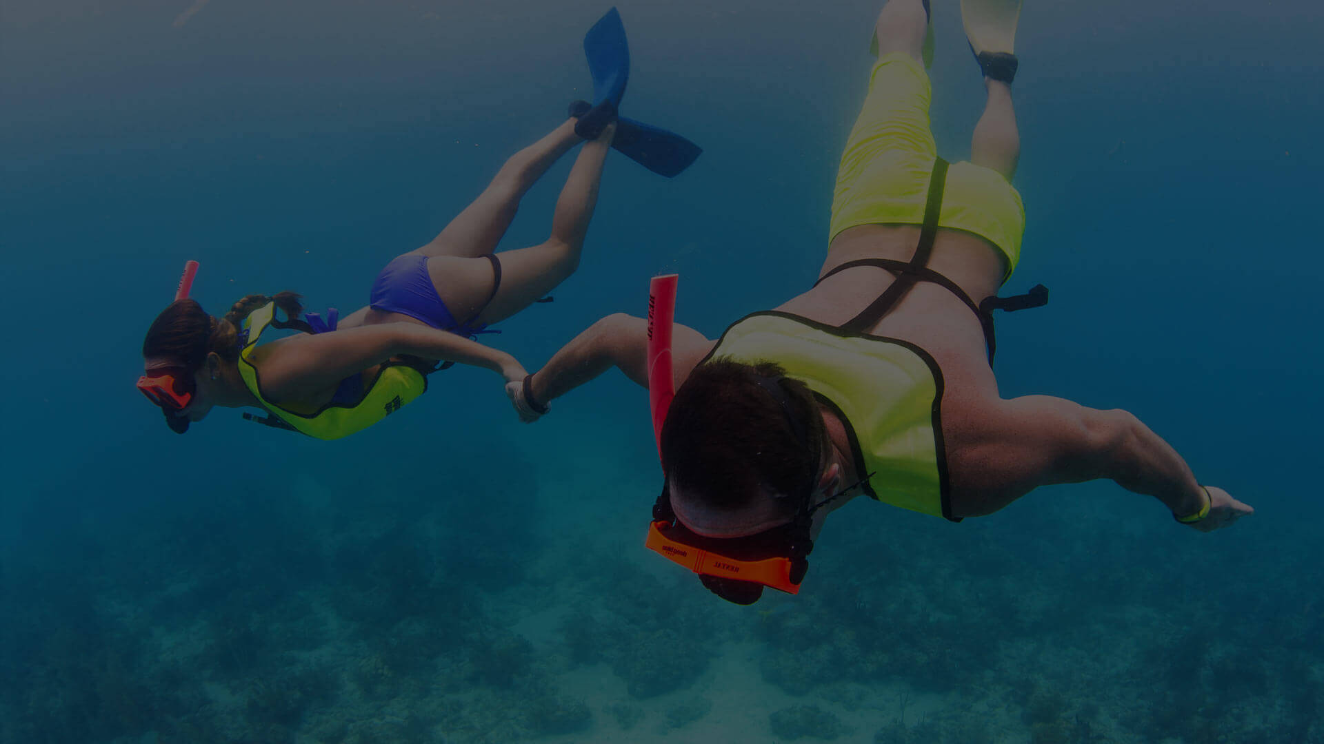 Two people snorkeling in Key West